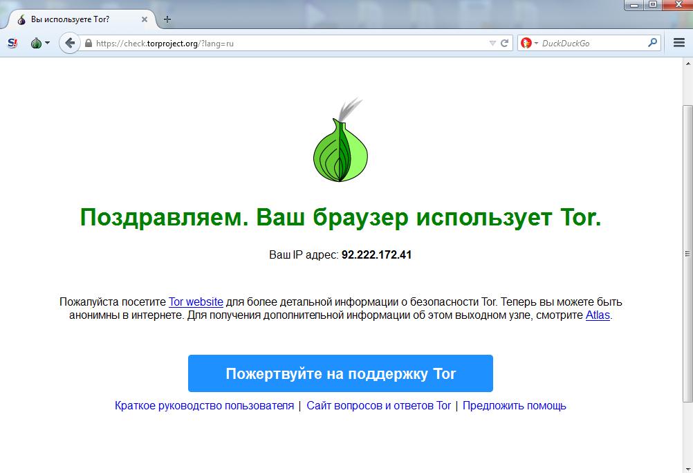 тор браузер скачать бесплатно русскаЯ версиЯ торрент гирда